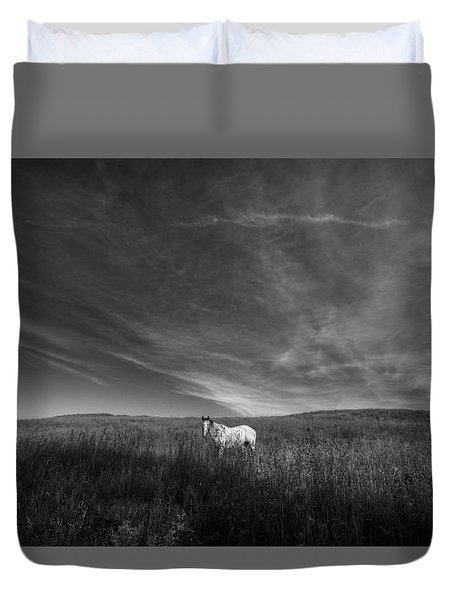 Horse In Field II Duvet Cover