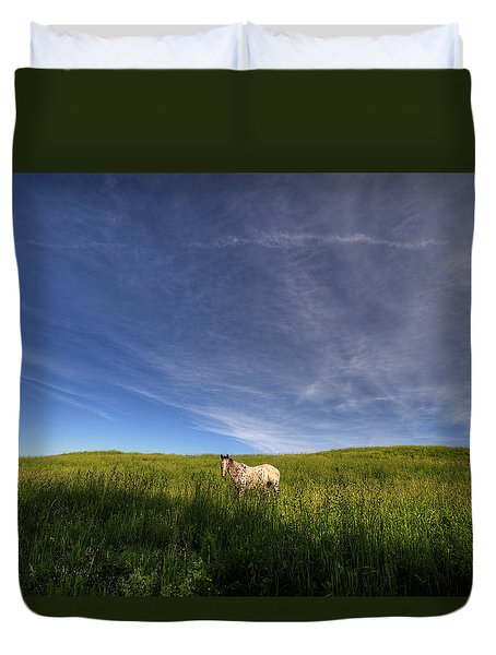 Horse In Field IIi Duvet Cover