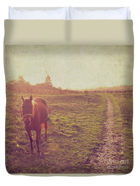 Horse Duvet Cover by Lyn Randle