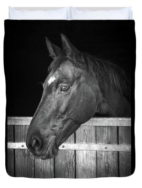 Duvet Cover featuring the photograph Horse Portrait by Delphimages Photo Creations