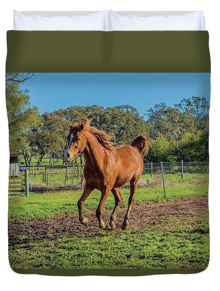Horse Trot  Duvet Cover