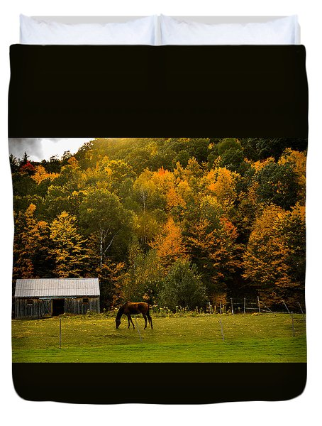 Horse Under Golden  Fall Foliage Duvet Cover