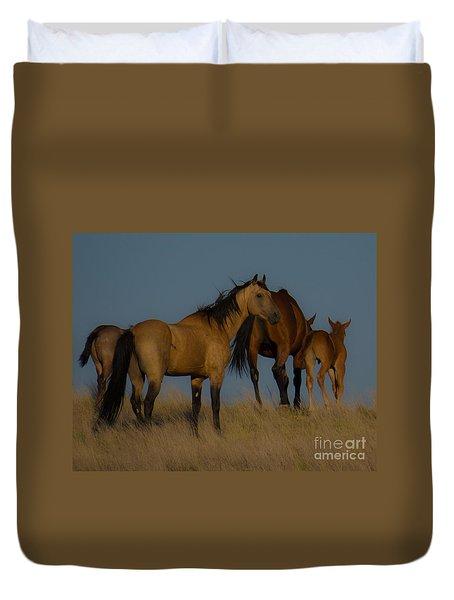 Horses 1 Duvet Cover