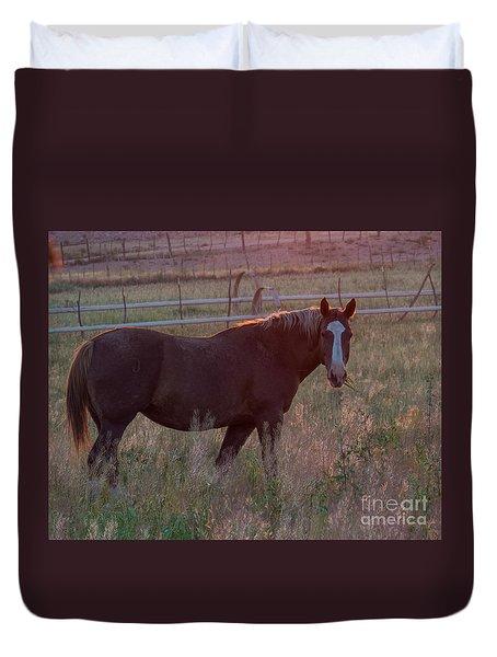 Horses 2 Duvet Cover
