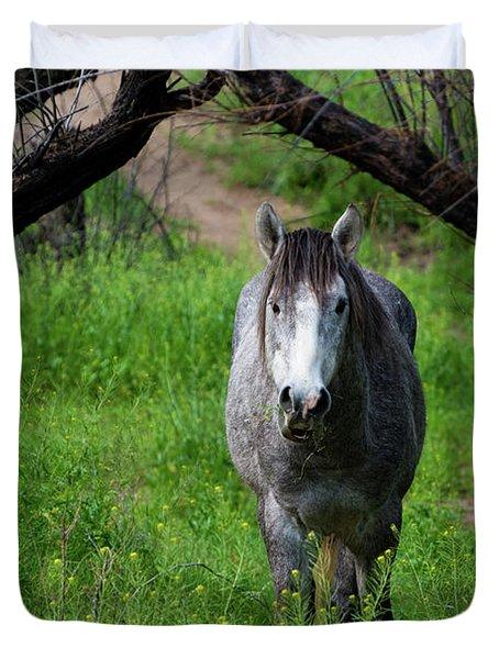 Horse's Arch Duvet Cover