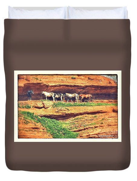 Horses Basking In The Sun Duvet Cover