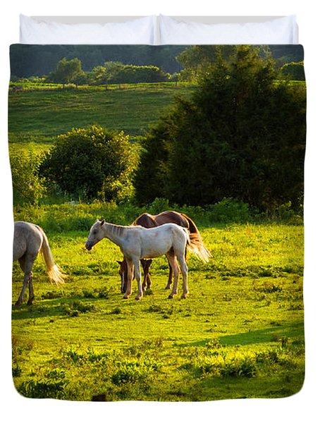 Horses Grazing In Evening Light Duvet Cover