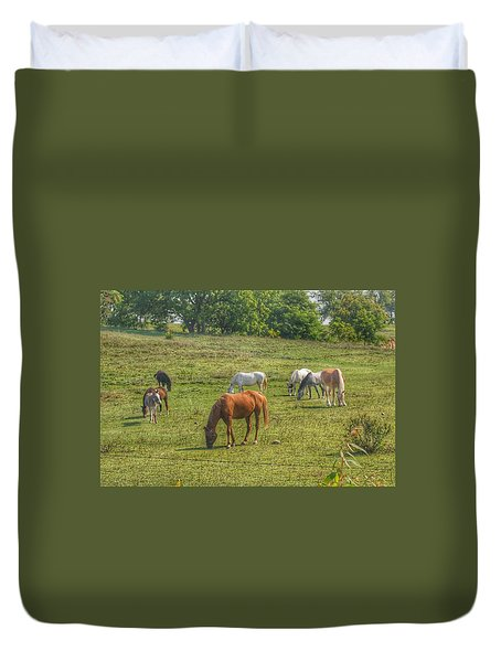 1003 - Horses In A Pasture I Duvet Cover