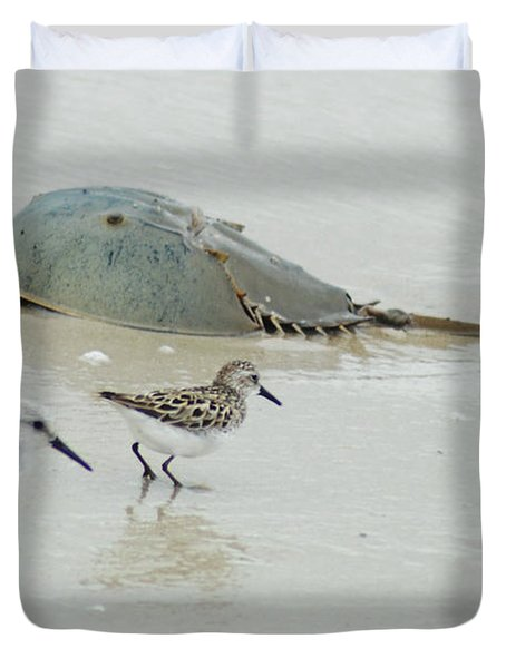 Duvet Cover featuring the photograph Horseshoe Crab With Migrating Shorebirds by Richard Bryce and Family