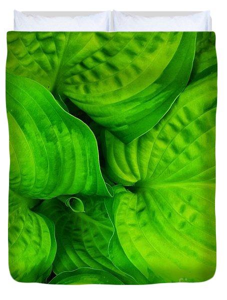 Hosta Green  Duvet Cover by Rachel Hannah