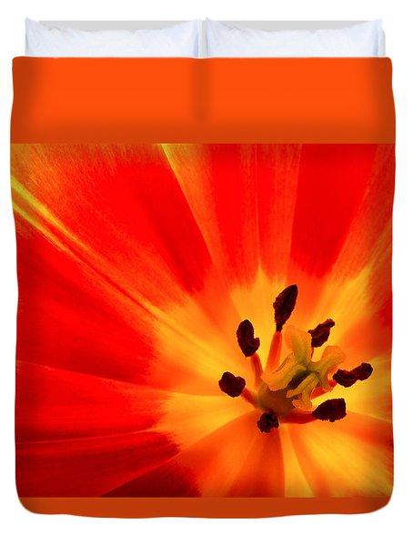 Hot Air Tulip Duvet Cover