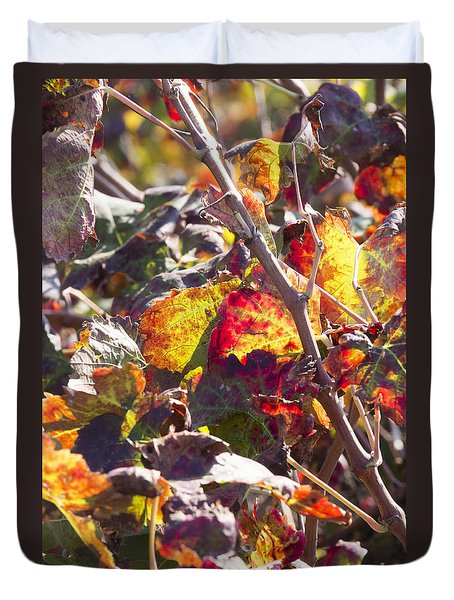 Hot Autumn Colors In The Vineyard 02 Duvet Cover