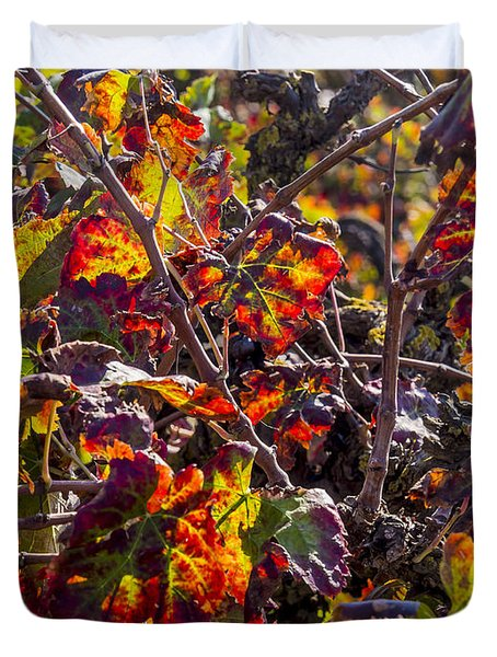 Hot Autumn Colors In The Vineyard 03 Duvet Cover