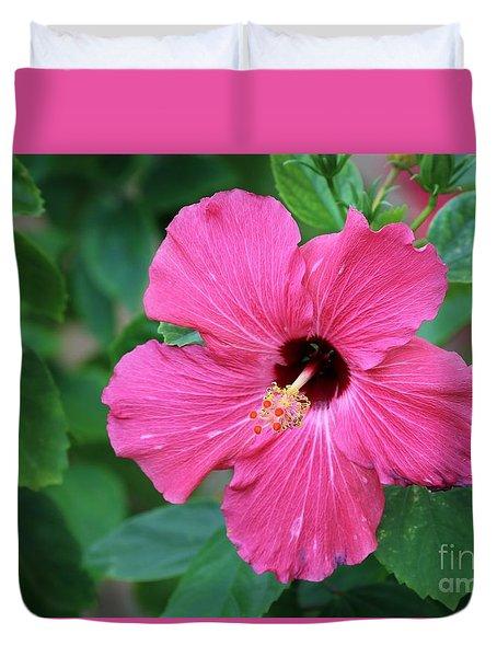 Hot Pink  Duvet Cover