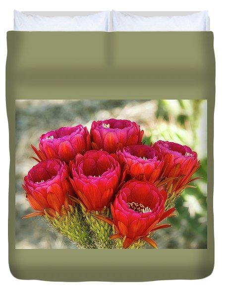 Duvet Cover featuring the photograph Hot Pink Torch Cactus Bouquet  by Saija Lehtonen