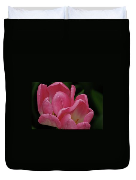 Hot Pink Tulip Duvet Cover