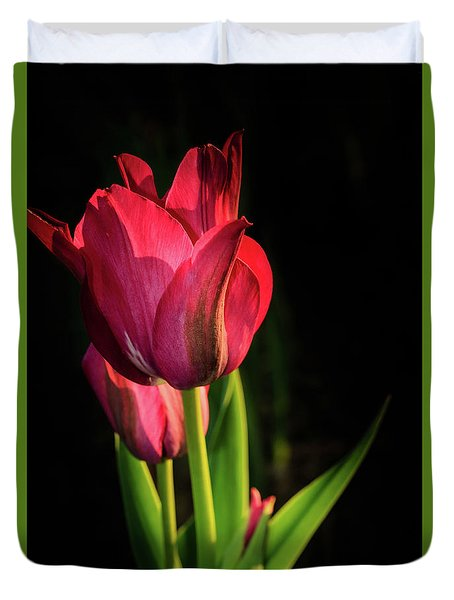 Hot Pink Tulip On Black Duvet Cover