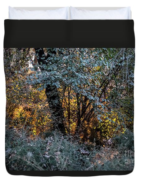 Hot Sunset In The Forest Duvet Cover