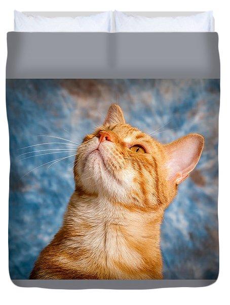 House Cat Duvet Cover by Doug Long