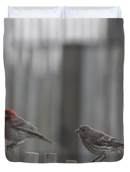 House Finches On The Fence Duvet Cover