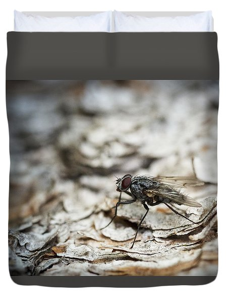 Duvet Cover featuring the photograph House Fly by Chevy Fleet