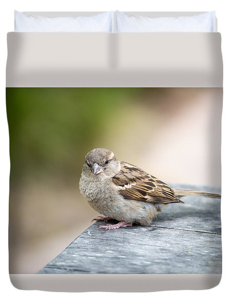 Duvet Cover featuring the photograph House Sparrow by Scott Lyons