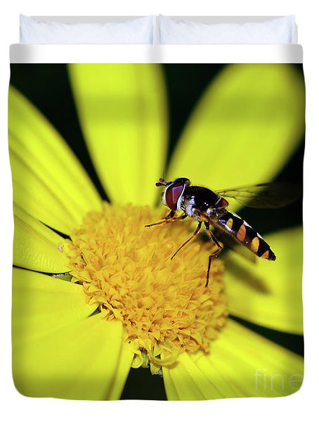 Duvet Cover featuring the photograph Hoverfly On Bright Yellow Daisy By Kaye Menner by Kaye Menner