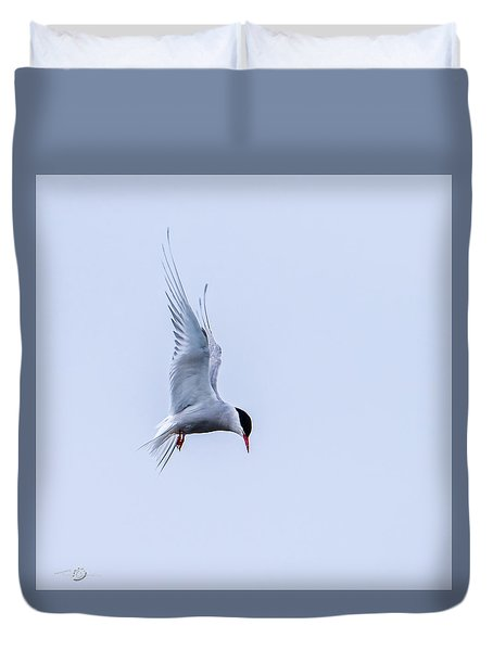 Hovering Arctic Tern Duvet Cover