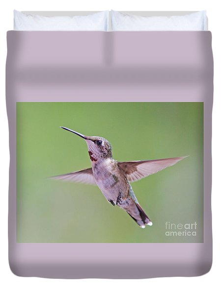 Hovering Hummingbird 5 Duvet Cover by Kevin McCarthy