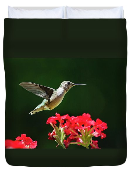 Hovering Hummingbird Duvet Cover by Christina Rollo