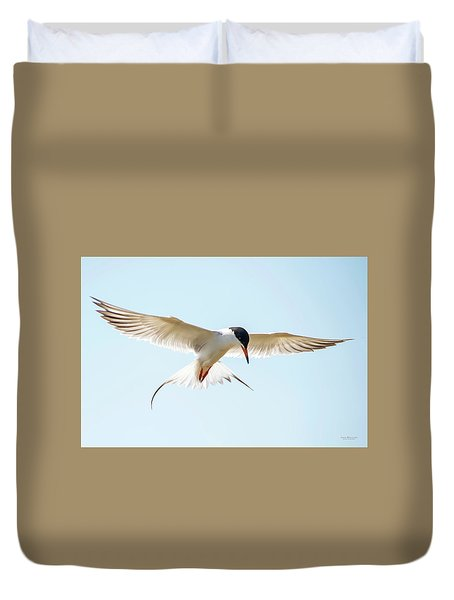 Hovering Tern Duvet Cover