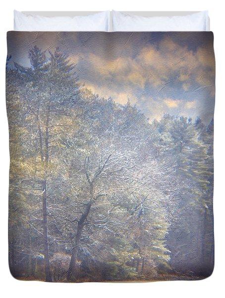 Howe State Park In Winter Duvet Cover