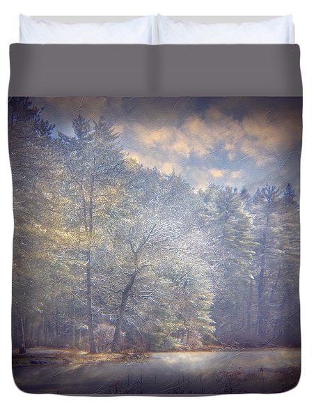 Howe State Park In Winter Duvet Cover