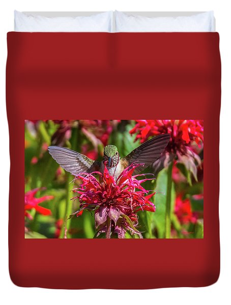 Hummingbird At Eagles Nest Duvet Cover