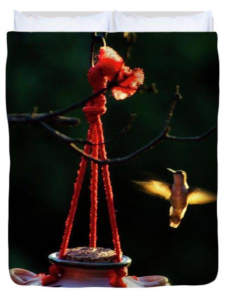 Humming Bird At Sunrise Duvet Cover