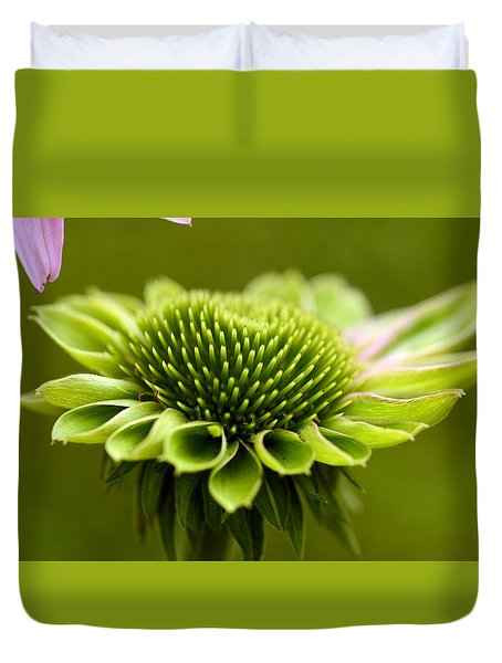 Humming Bird Feeder Duvet Cover by Wanda Brandon