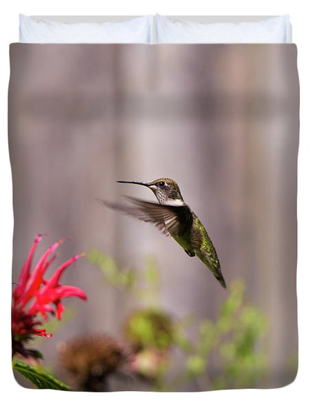 Humming Bird Hovering Duvet Cover