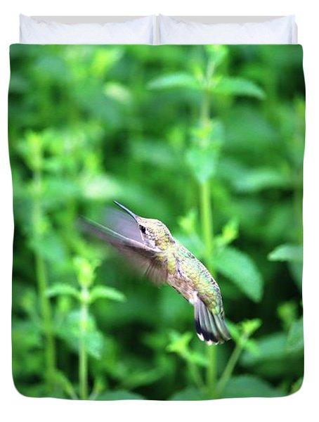 Humming Bird In Flight Duvet Cover