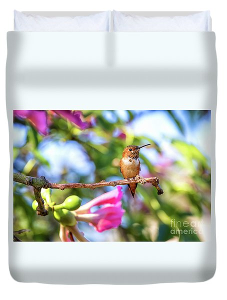 Humming Bird Pink Flowers Duvet Cover by Stephanie Hayes