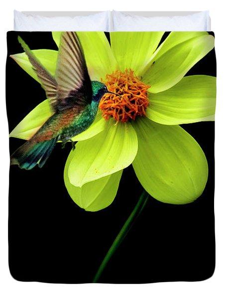 Humming Birds 3 Duvet Cover