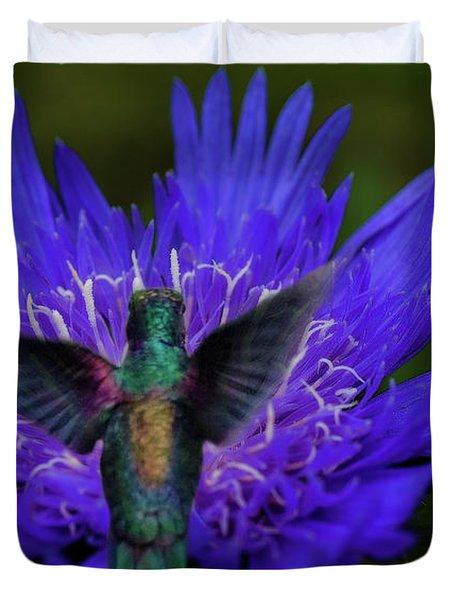 Humming Birds 6 Duvet Cover