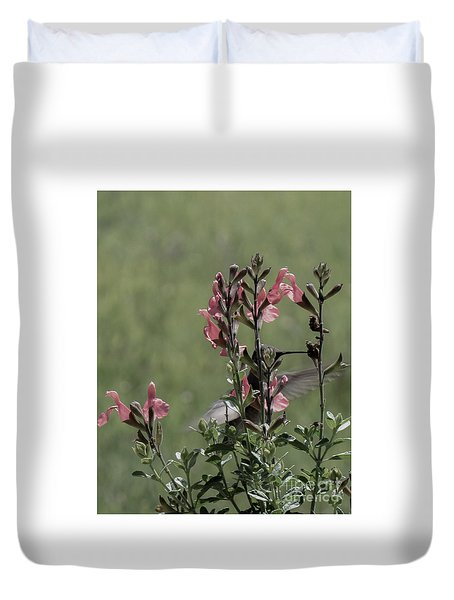 Hummingbird 1 Duvet Cover