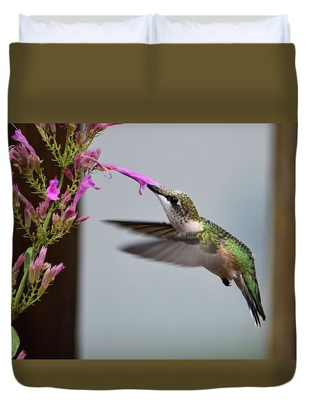 Hummingbird And Agastache Duvet Cover
