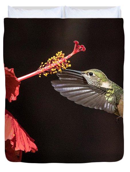 Hummingbird And Hibiiscus Duvet Cover
