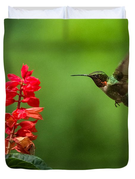 Hummingbird And Scarlet Sage Duvet Cover