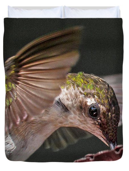 Hummingbird. Duvet Cover