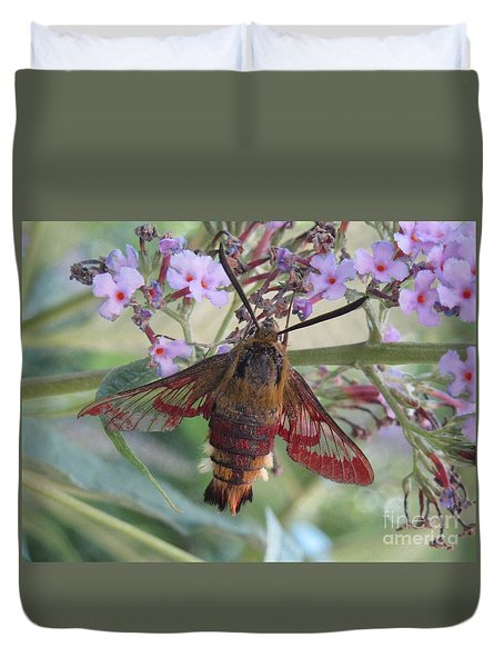 Hummingbird Butterfly Duvet Cover by Jeepee Aero