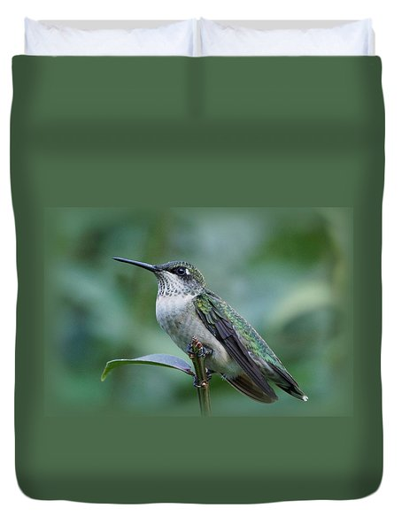 Hummingbird Close-up Duvet Cover by Sandy Keeton