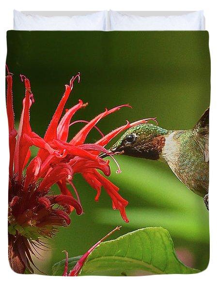 Hummingbird Delight Duvet Cover