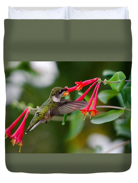 Duvet Cover featuring the photograph Hummingbird Feeding by Gary Wightman